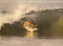 Surfing image 1980s